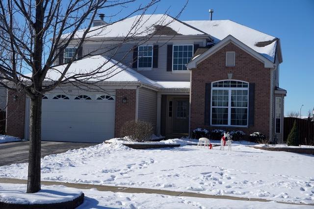 395 S Palmer Drive, Bolingbrook, IL 60490 (MLS #09827594) :: Lewke Partners