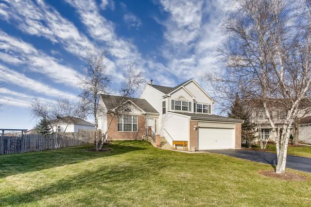 2 Bosi Court, Bolingbrook, IL 60490 (MLS #09827726) :: The Dena Furlow Team - Keller Williams Realty