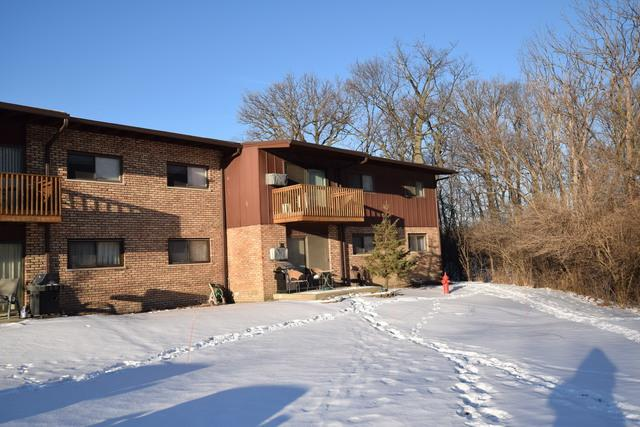 8000 Archer Avenue A219, Willow Springs, IL 60480 (MLS #09827935) :: The Wexler Group at Keller Williams Preferred Realty