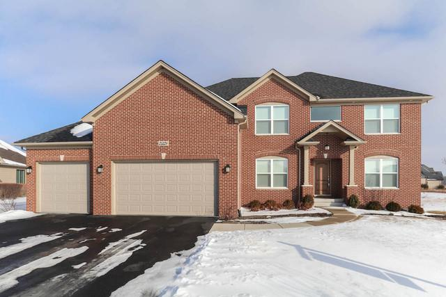 25224 Parkside Drive, Plainfield, IL 60544 (MLS #09828594) :: The Dena Furlow Team - Keller Williams Realty