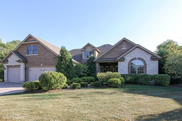 1138 Sycamore Drive, Lake Zurich, IL 60047 (MLS #09829973) :: The Jacobs Group