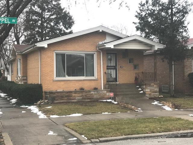 9001 S Chappel Avenue, Chicago, IL 60617 (MLS #09830977) :: Ani Real Estate
