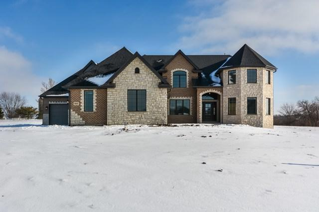 18445 Pine Prairie Drive, Mokena, IL 60448 (MLS #09831208) :: The Wexler Group at Keller Williams Preferred Realty