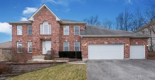 432 Delaware Circle, Bolingbrook, IL 60440 (MLS #09832486) :: The Dena Furlow Team - Keller Williams Realty