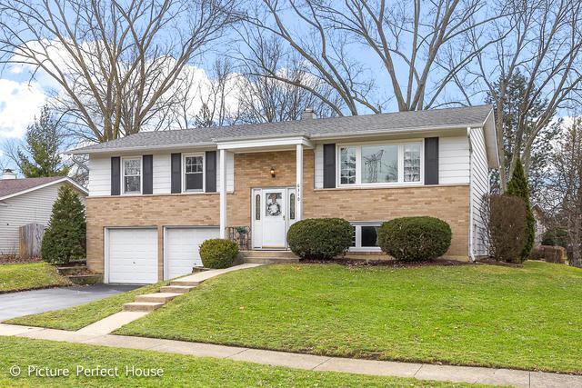 6310 Winston Drive, Woodridge, IL 60517 (MLS #09834429) :: The Jacobs Group