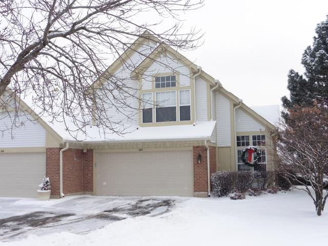 1693 Pearl Court, Crystal Lake, IL 60014 (MLS #09834433) :: The Jacobs Group