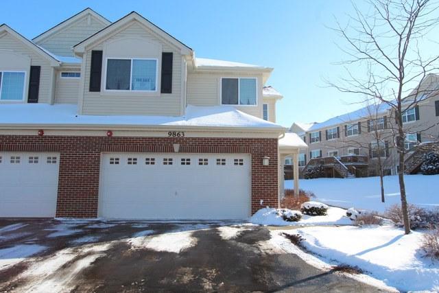 9863 Williams Drive, Huntley, IL 60142 (MLS #09834871) :: Lewke Partners