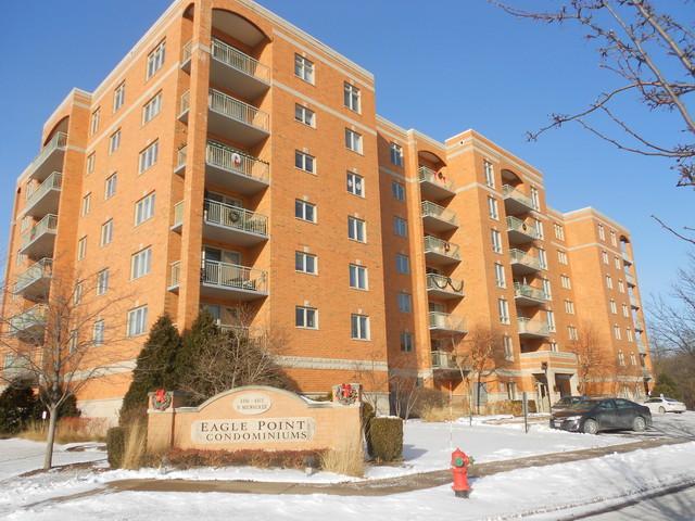 6801 N Mlwaukee Avenue #307, Niles, IL 60714 (MLS #09835198) :: Helen Oliveri Real Estate