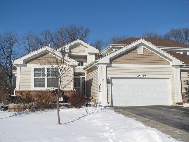 26022 W Timber Ridge Drive, Channahon, IL 60410 (MLS #09835410) :: The Wexler Group at Keller Williams Preferred Realty