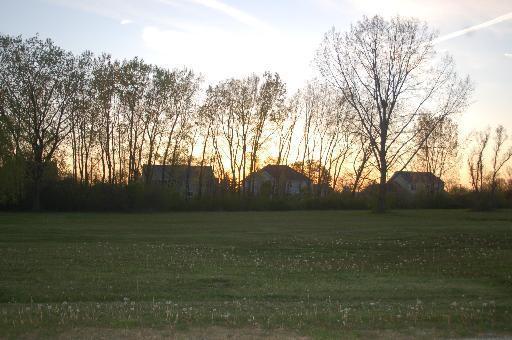 Lot 4 Pheasant Drive, Lakewood, IL 60014 (MLS #09835632) :: Lewke Partners