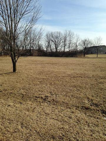 Lot 24 Pheasant Lane, Lakewood, IL 60014 (MLS #09835634) :: Lewke Partners