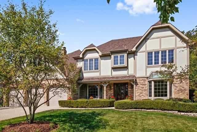 245 Meadowbrook Lane, Hinsdale, IL 60521 (MLS #09835928) :: The Wexler Group at Keller Williams Preferred Realty