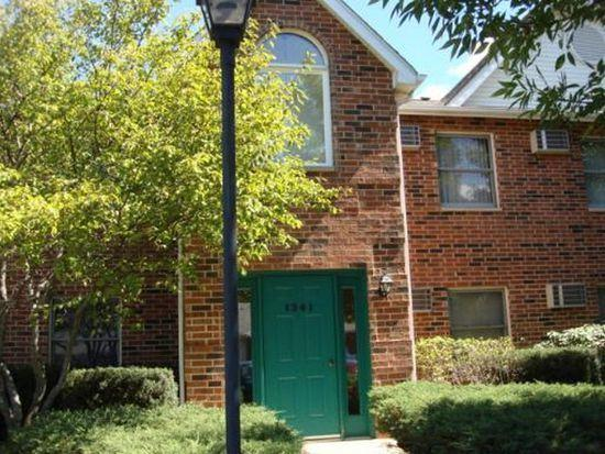 1341 Cunat Court 2A, Lake In The Hills, IL 60156 (MLS #09836236) :: Domain Realty