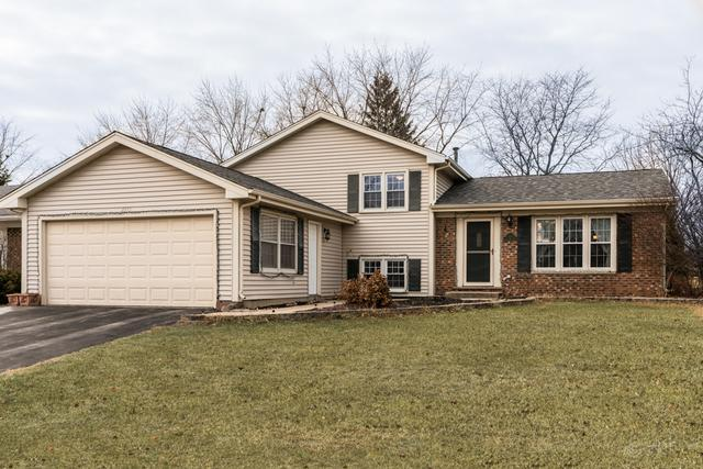 1375 Coral Reef Way, Lake Zurich, IL 60047 (MLS #09836809) :: RE/MAX Unlimited Northwest
