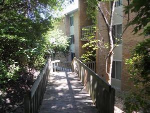 5904 Forest View Road 1E, Lisle, IL 60532 (MLS #09836836) :: Ani Real Estate