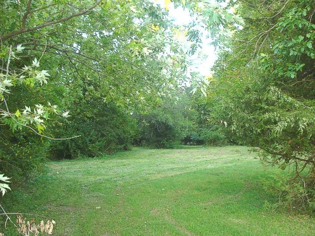 Lot 40 April Court, Varna, IL 61375 (MLS #09837659) :: The Dena Furlow Team - Keller Williams Realty