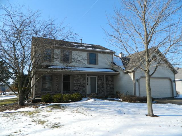 541 Rees Street, Hinckley, IL 60520 (MLS #09837710) :: The Jacobs Group