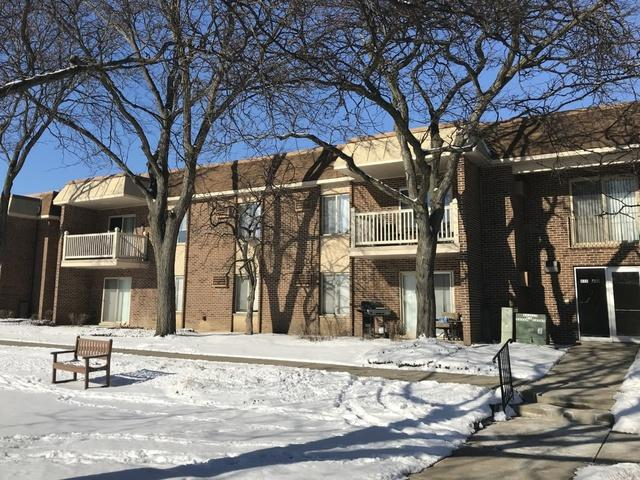 432 N Wilke Road #204, Palatine, IL 60074 (MLS #09837783) :: RE/MAX Unlimited Northwest