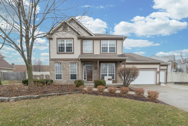 2509 Hannibal Circle, Plainfield, IL 60586 (MLS #09837893) :: The Wexler Group at Keller Williams Preferred Realty