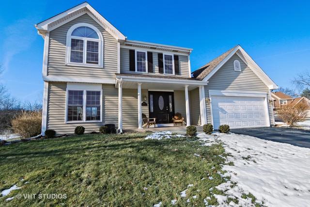 602 Braemar Lane, Barrington, IL 60010 (MLS #09837983) :: RE/MAX Unlimited Northwest
