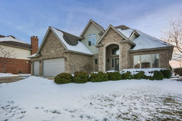 19966 Aine Drive, Frankfort, IL 60423 (MLS #09838068) :: Property Consultants Realty