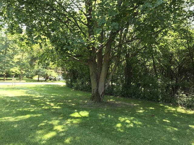 5 W Surrey Lane, Barrington Hills, IL 60010 (MLS #09838132) :: RE/MAX Unlimited Northwest