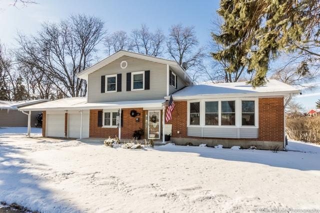 362 N Wilke Road, Palatine, IL 60074 (MLS #09838272) :: RE/MAX Unlimited Northwest
