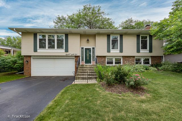 1461 Brunette Drive, Downers Grove, IL 60516 (MLS #09838332) :: The Wexler Group at Keller Williams Preferred Realty