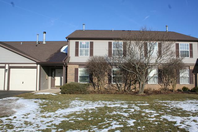 229 Brett Circle C, Wauconda, IL 60084 (MLS #09838460) :: RE/MAX Unlimited Northwest