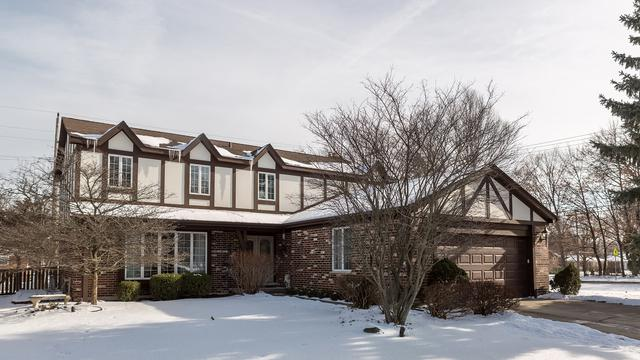 603 N Carlyle Lane, Arlington Heights, IL 60004 (MLS #09838472) :: RE/MAX Unlimited Northwest