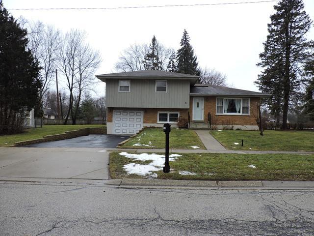 31 Woodview Lane, Algonquin, IL 60102 (MLS #09838598) :: RE/MAX Unlimited Northwest