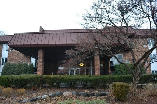 1049 W Ogden Avenue 1-216, Naperville, IL 60563 (MLS #09838637) :: Ani Real Estate