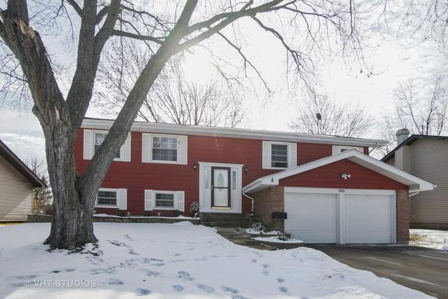 1165 Hassell Road, Hoffman Estates, IL 60169 (MLS #09838773) :: RE/MAX Unlimited Northwest