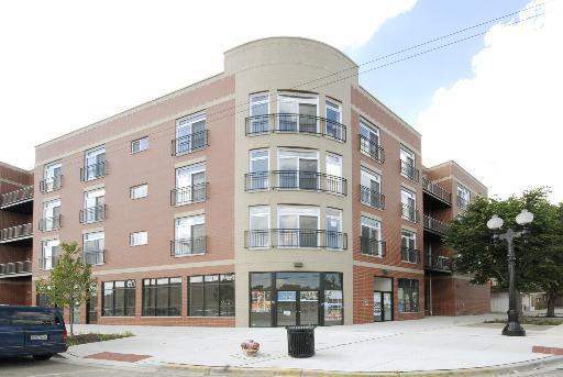 2520 S Oakley Avenue #307, Chicago, IL 60608 (MLS #09838790) :: RE/MAX Unlimited Northwest