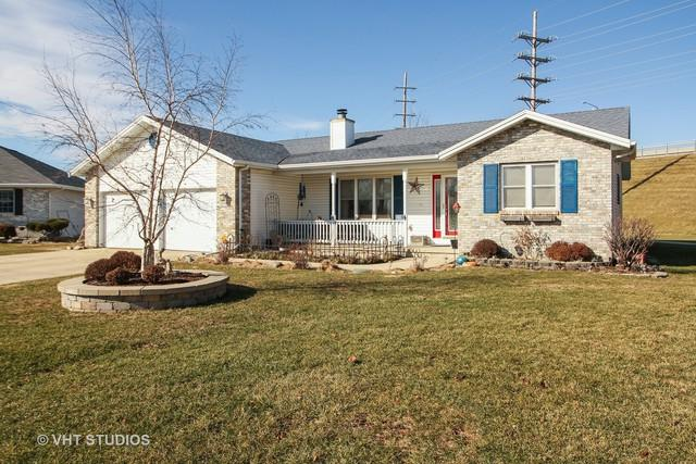1195 Swan Drive, Bradley, IL 60915 (MLS #09843262) :: The Dena Furlow Team - Keller Williams Realty
