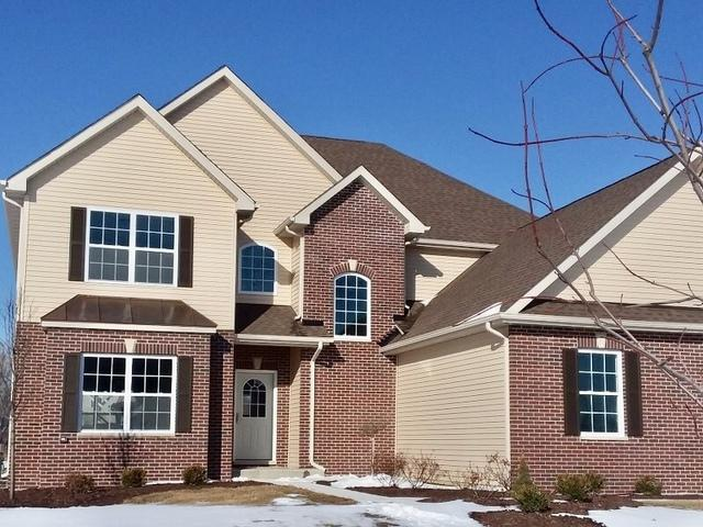 27503 W Deer Hollow Lane, Channahon, IL 60410 (MLS #09844650) :: The Dena Furlow Team - Keller Williams Realty