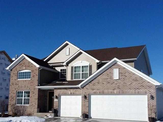 27459 W Deer Hollow Lane, Channahon, IL 60410 (MLS #09844809) :: The Dena Furlow Team - Keller Williams Realty