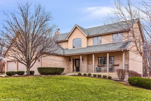 22351 N Pine Ridge Court, Frankfort, IL 60423 (MLS #09846128) :: Domain Realty