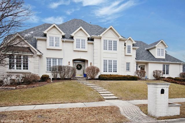 11020 Arbor Ridge Drive, Orland Park, IL 60467 (MLS #09848128) :: The Dena Furlow Team - Keller Williams Realty
