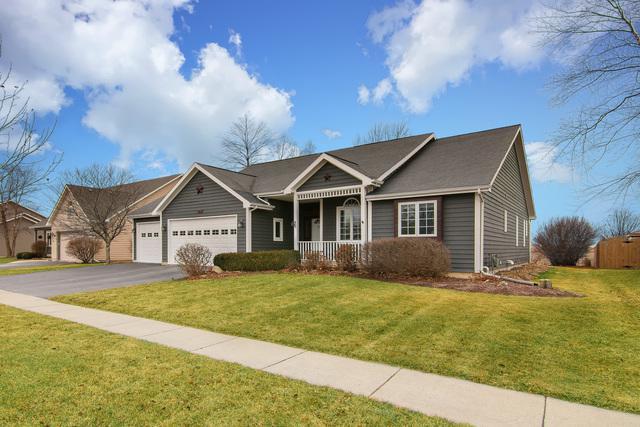 571 Meadow Lane, Hinckley, IL 60520 (MLS #09849180) :: Littlefield Group
