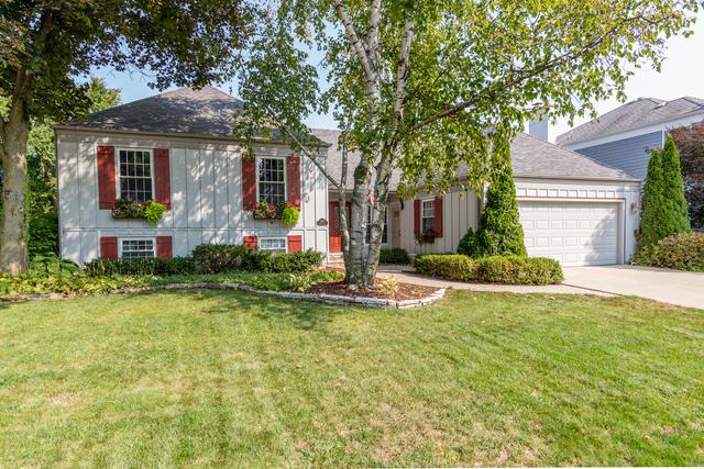 2069 Spring Green Drive, Wheaton, IL 60189 (MLS #09849304) :: The Dena Furlow Team - Keller Williams Realty