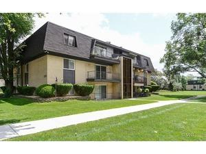 11102 S 84th Avenue 2B, Palos Hills, IL 60465 (MLS #09849754) :: The Wexler Group at Keller Williams Preferred Realty
