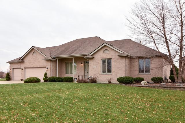 22509 Parkview Lane, Frankfort, IL 60423 (MLS #09849765) :: Domain Realty