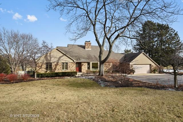 21520 W Lakeview Parkway, Mundelein, IL 60060 (MLS #09849912) :: The Jacobs Group