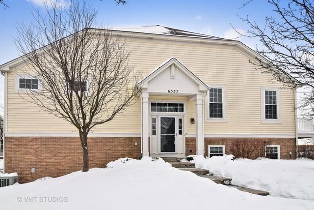 6537 Church Street, Hanover Park, IL 60133 (MLS #09849975) :: Lewke Partners