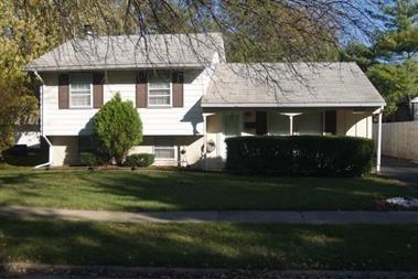 22217 Kostner Avenue, Richton Park, IL 60471 (MLS #09850123) :: The Dena Furlow Team - Keller Williams Realty