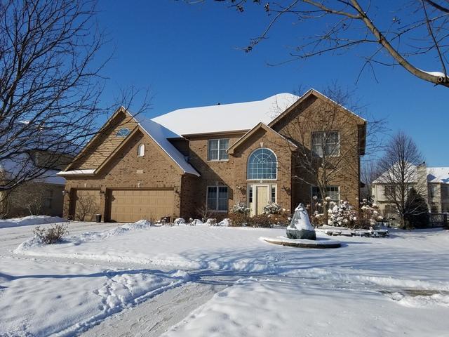 3223 Tall Grass Drive, Naperville, IL 60564 (MLS #09853976) :: Lewke Partners