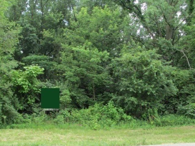 0000 Irish Lane, Custer Park, IL 60481 (MLS #09854534) :: The Dena Furlow Team - Keller Williams Realty
