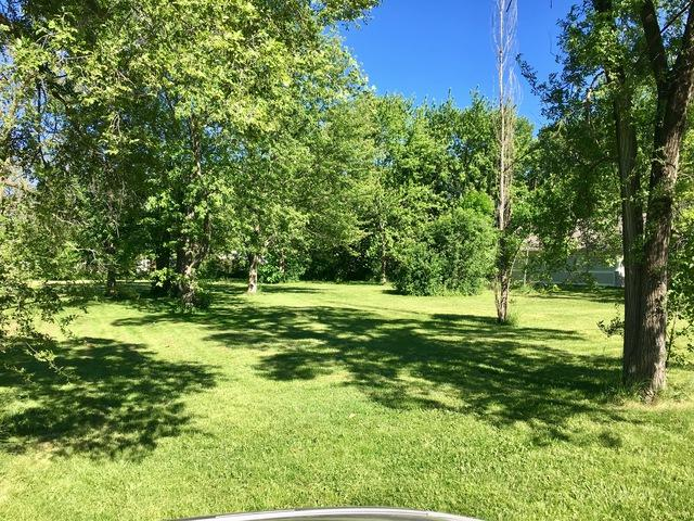 8555 S 85th Court, Hickory Hills, IL 60457 (MLS #09854664) :: The Wexler Group at Keller Williams Preferred Realty