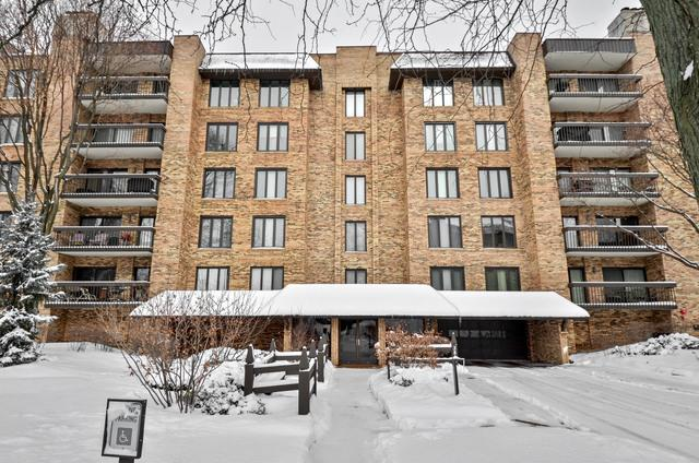 3810 Mission Hills Road #203, Northbrook, IL 60062 (MLS #09855179) :: Domain Realty